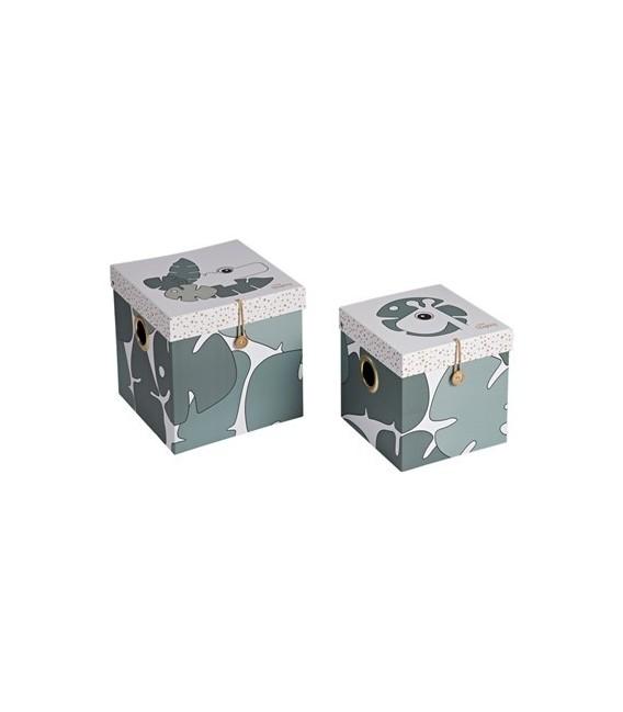PACK BOX SET 2 PCS LARGE TINY TROPICS 5095963 DONE BY DEER